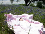Spring Baby, Texas Bluebonnets