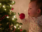 Eating another ornament